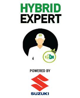 hybrid expert